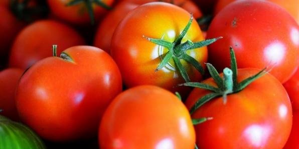 tomatoes-gingerybamboo (800x400)
